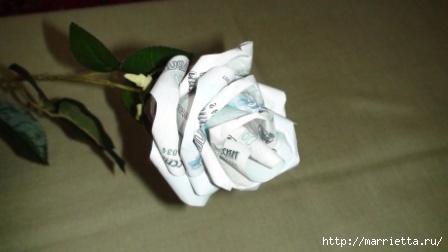 Денежные розы (14) (448x252, 56Kb)