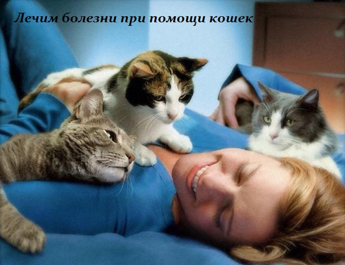2749438_Lechim_bolezni_pri_pomoshi_koshek (700x537, 509Kb)