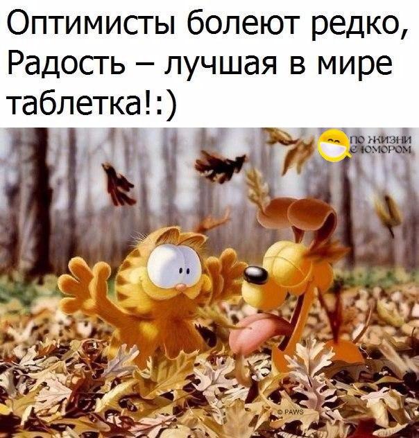 3085196_s8rKzCkoHI8 (604x632, 93Kb)