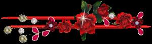 красные цветы и палочки (300x87, 13Kb)