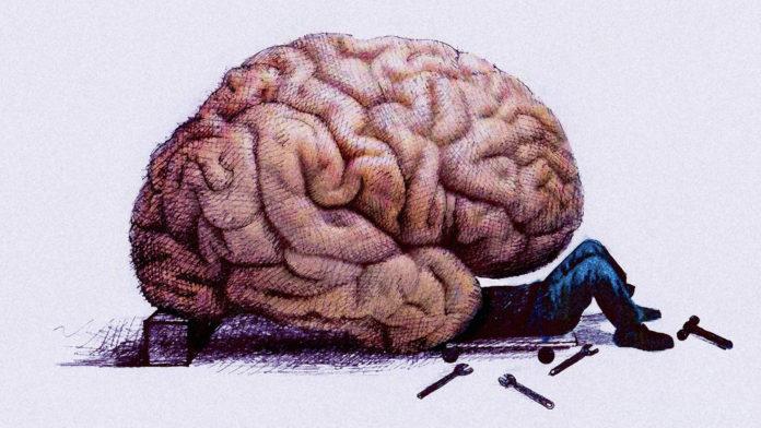 4679592_brainhack_wide6be35b7f2cb34665c2efd5143847d1ef35f2411ae1457079248736696x392 (696x392, 64Kb)