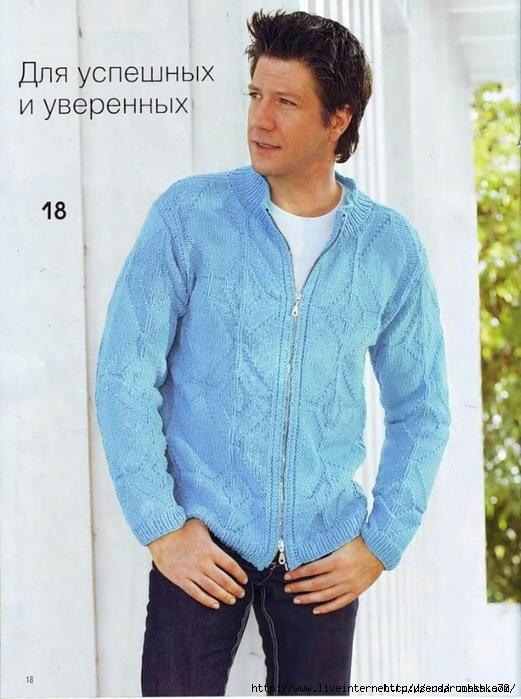 Muzhskoy-kardigan-na-zamke (521x699, 263Kb)