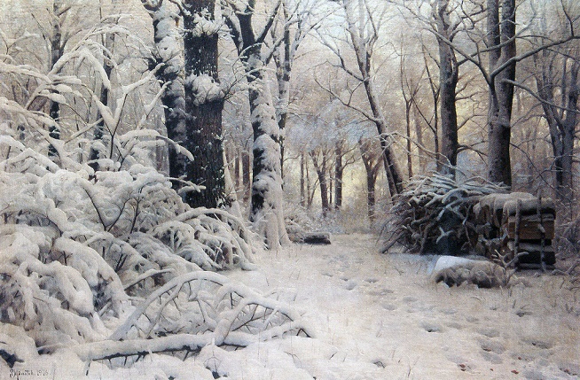 Forest in snow (654x429, 456Kb)
