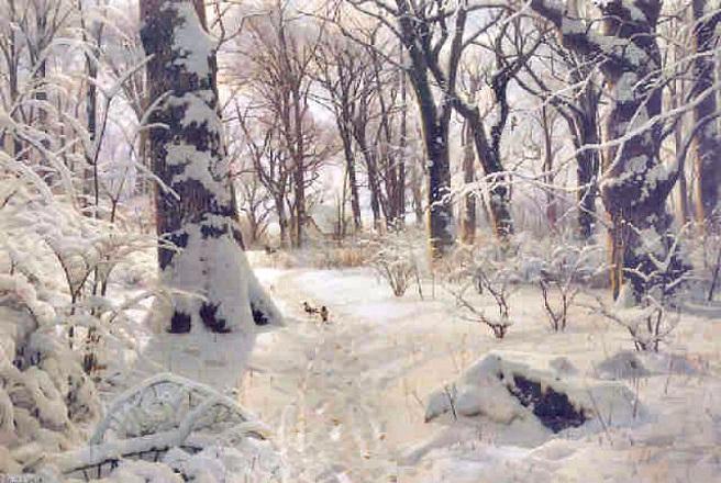 Снежный пейзаж в лесу (656x440, 329Kb)