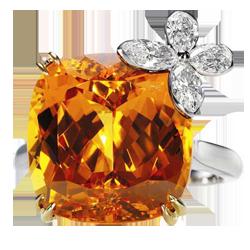 ring_mandarin-acf1d (250x250, 89Kb)