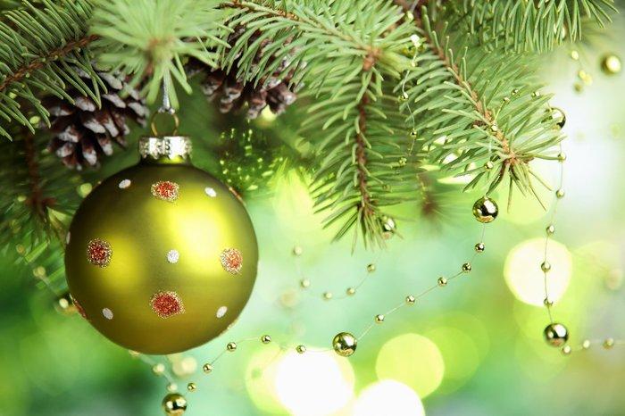 4265673_Christmas_tree_02 (700x466, 67Kb)