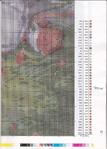Превью Вышиванка 108 (8)_Страница_28 (501x700, 521Kb)