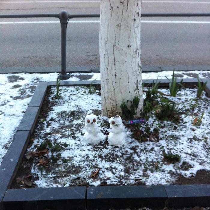 снег (700x700, 92Kb)