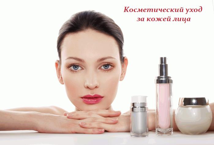 2749438_Kosmeticheskii_yhod_za_kojei_lica (700x475, 239Kb)