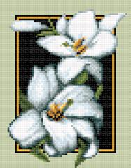 белые цветы1 (187x240, 47Kb)