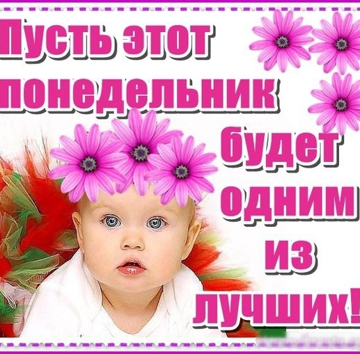 3470549_poned_ (517x509, 74Kb)