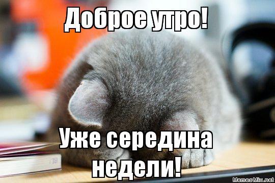 3470549_sreda_seredina (540x359, 39Kb)