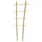Превью бамбукова драбина для рослин (232x232, 22Kb)