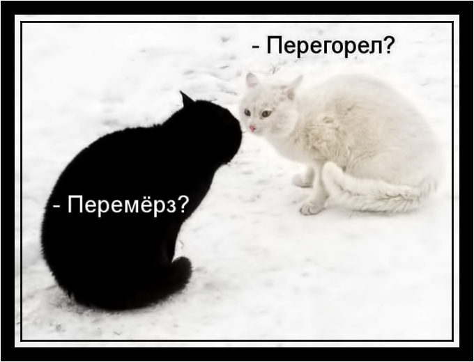 http://img0.liveinternet.ru/images/attach/d/1/132/915/132915644_2_8_.jpg