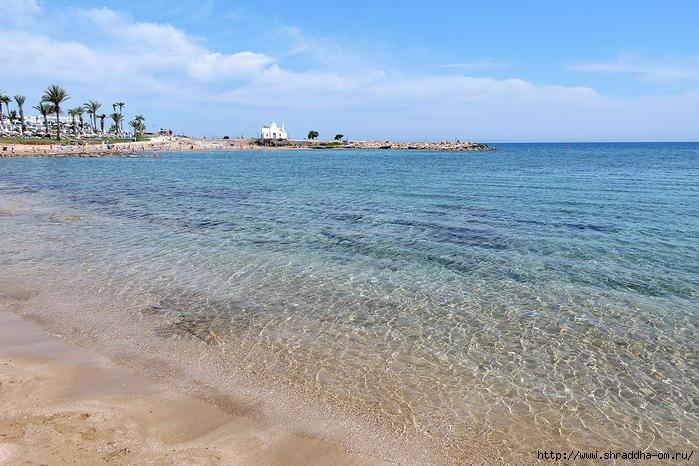 Кипр, май 2016 (334) (700x466, 323Kb)