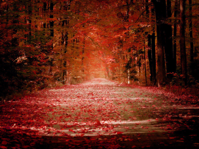 Autumn_by_sican (700x525, 667Kb)
