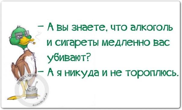 5672049_1419786299_frazochki5 (604x367, 34Kb)