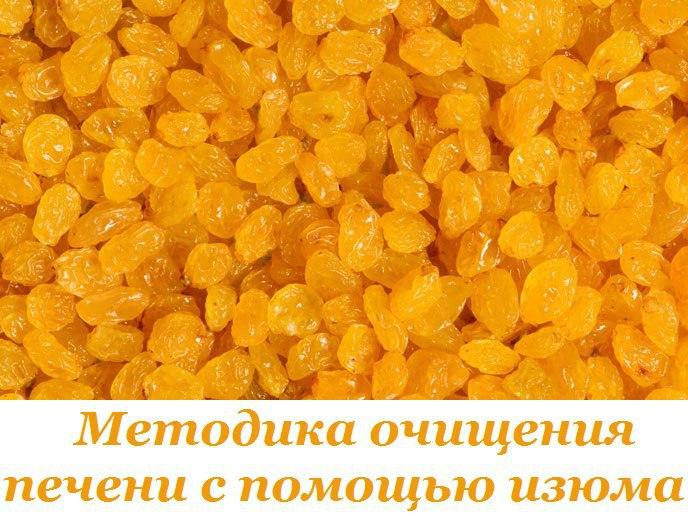 2749438_Metodika_ochisheniya_pecheni_s_pomoshu_izuma (688x518, 92Kb)