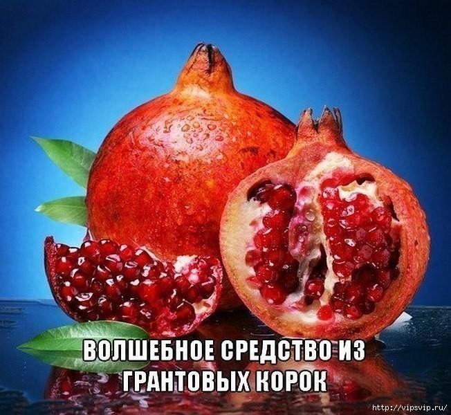 5745884_granat_lechit (652x600, 252Kb)