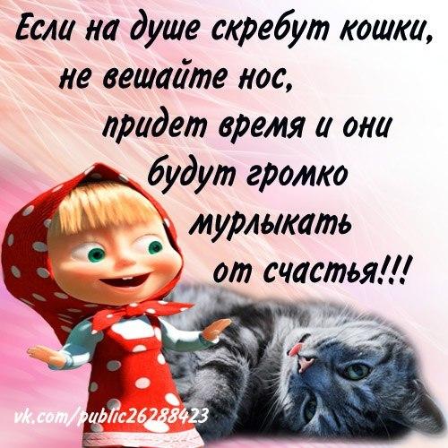 111251976_4809770_sh2 (500x500, 74Kb)