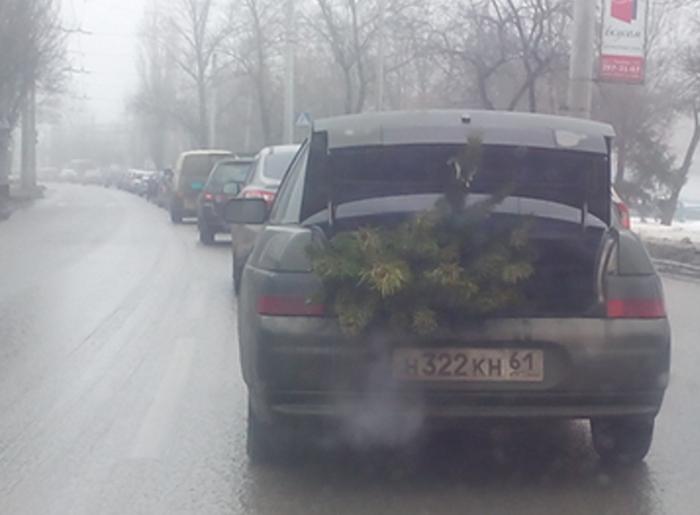 новогодняя ёлка/683232_pervaya_yolka (700x515, 156Kb)