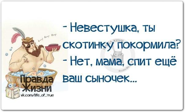5672049_1420484057_frazki16 (604x367, 32Kb)