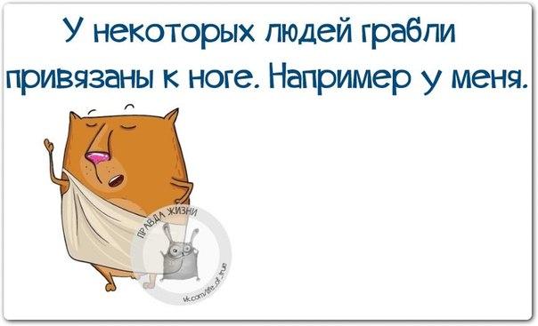 5672049_1420484072_frazki14 (604x367, 32Kb)