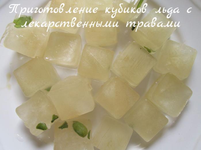 """alt=""""Приготовление кубиков льда с лекарственными травами""""/2835299__2_ (700x524, 415Kb)"""