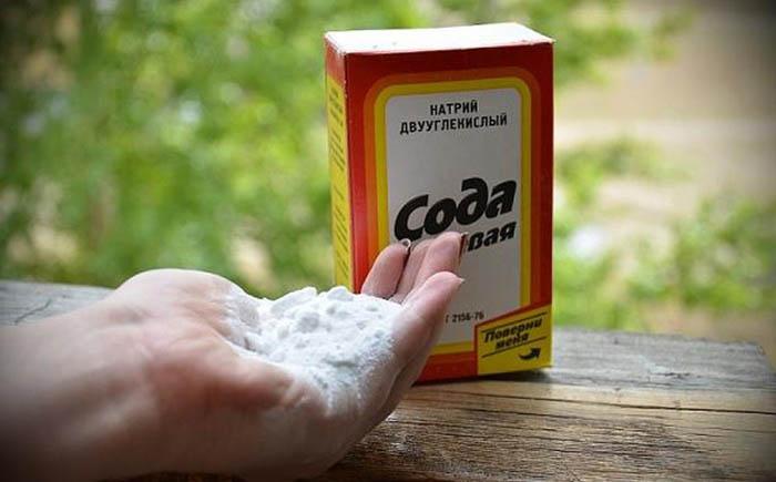 Baking-Soda-0 (700x435, 55Kb)