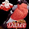 5230261_dalee_pt_s_ryab (98x100, 21Kb)