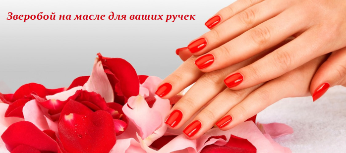 2749438_Zveroboi_na_masle_dlya_vashih_rychek (700x309, 265Kb)