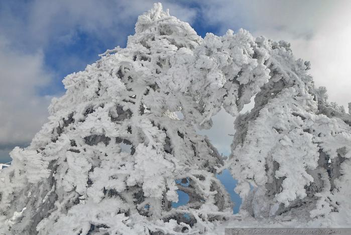 ай-петри зимой фото 10 (700x467, 299Kb)