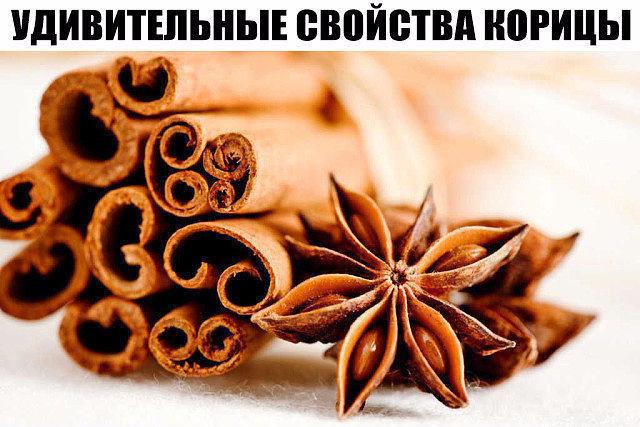 image (10) (640x427, 283Kb)