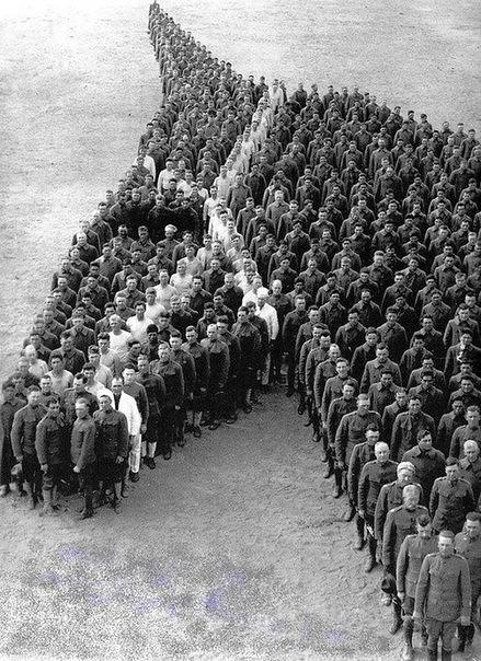 конь (439x604, 106Kb)