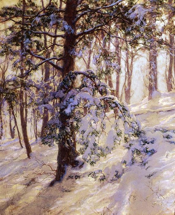 Согнутая под снегом ветвь. (571x700, 586Kb)