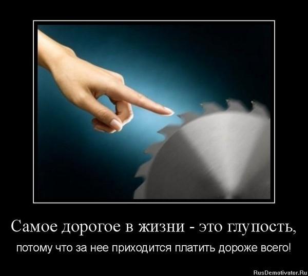 OI_1dcd8a94fc93406ca74097ed5ffb1dad_big (600x538, 94Kb)