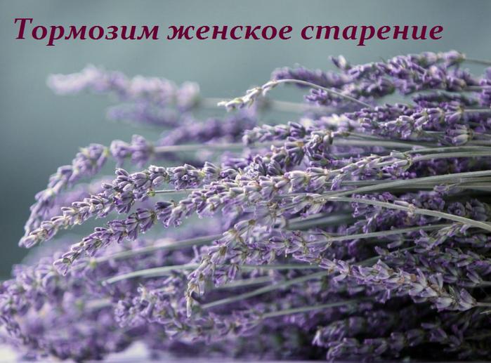 2749438_Tormozim_jenskoe_starenie (700x517, 532Kb)