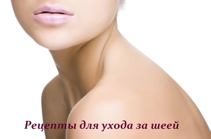 2749438_Recepti_dlya_yhoda_za_sheei (700x463, 192Kb)