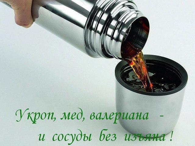 5640974_5pId25dUVPA (640x480, 55Kb)