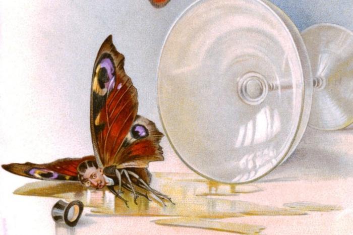 бабочка (700x466, 116Kb)