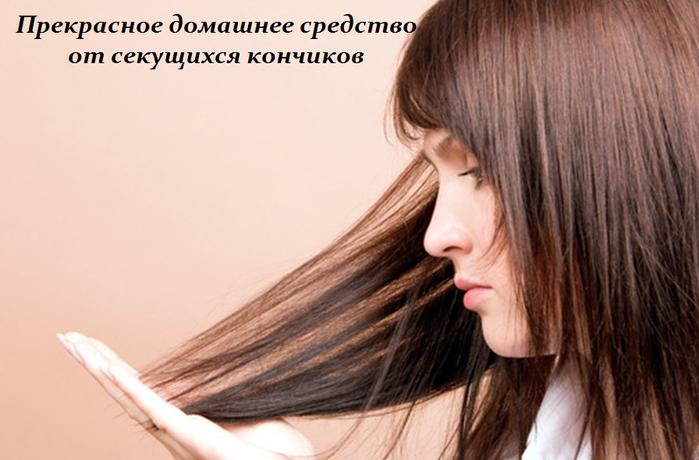 2749438_Prekrasnoe_domashnee_sredstvo_ot_sekyshihsya_konchikov (700x460, 404Kb)