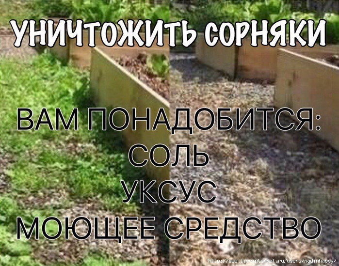 image (700x549, 372Kb)