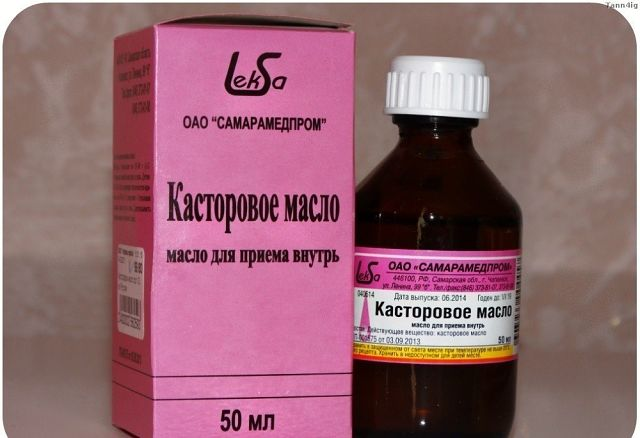 5239983_kastorka (640x438, 36Kb)