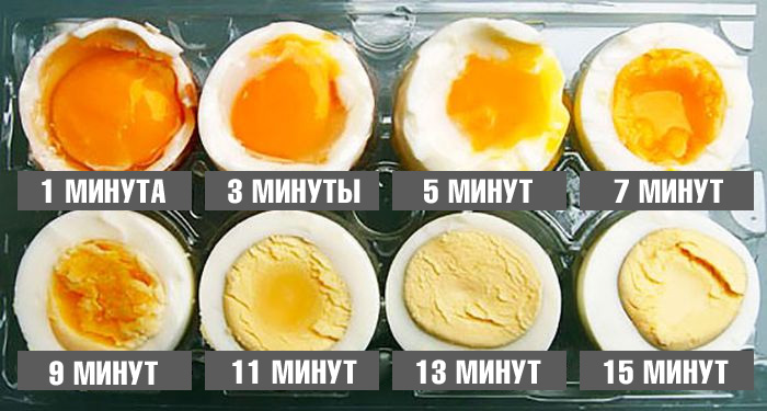 3437398_eggs_ideal_time (700x375, 85Kb)