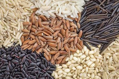 grains (410x274, 87Kb)