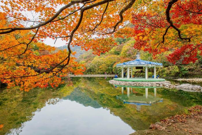 1. Нэджангсан, Южная Корея (700x465, 590Kb)