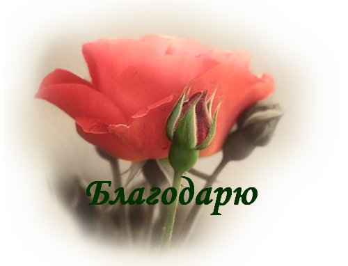 133532808_blagodaryu__12_[1] (500x382, 340Kb)