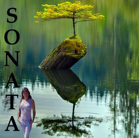 Sonata (464x459, 52Kb)