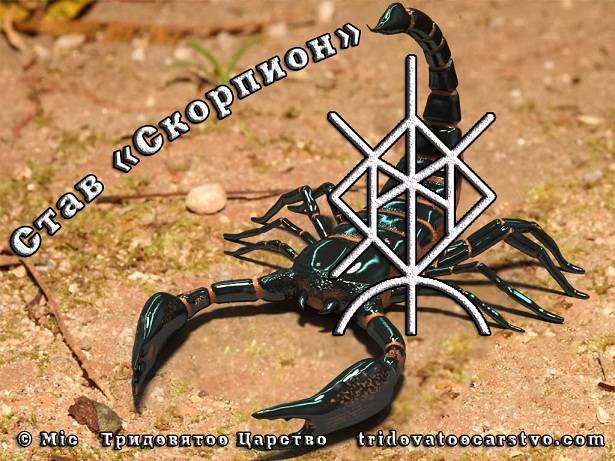 5916975_skorpion (615x461, 65Kb)