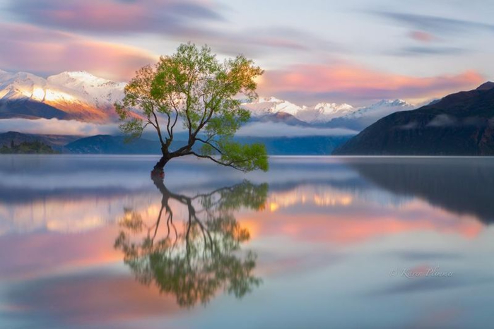 красота природы 16 (700x466, 249Kb)